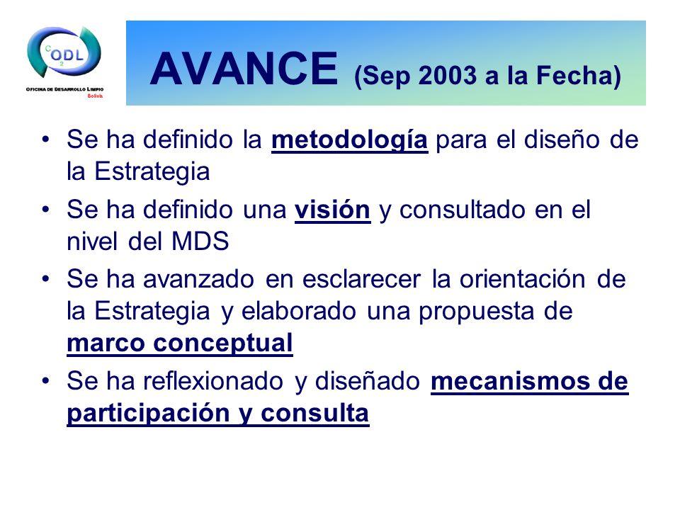 AVANCE (Sep 2003 a la Fecha) Se ha definido la metodología para el diseño de la Estrategia Se ha definido una visión y consultado en el nivel del MDS