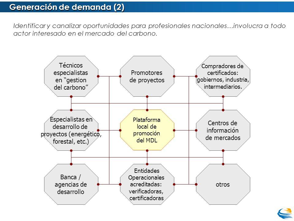 Generación de demanda (2) Plataforma local de promoción del MDL Identificar y canalizar oportunidades para profesionales nacionales…involucra a todo a