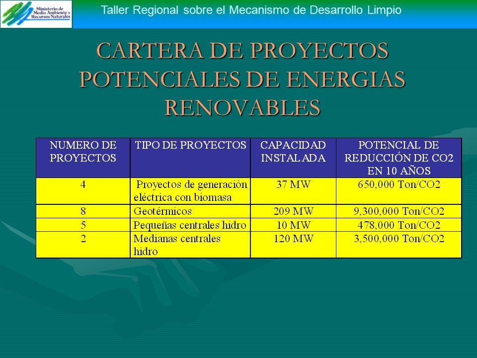 Taller Regional sobre el Mecanismo de Desarrollo Limpio CARTERA DE PROYECTOS POTENCIALES DE ENERGIAS RENOVABLES