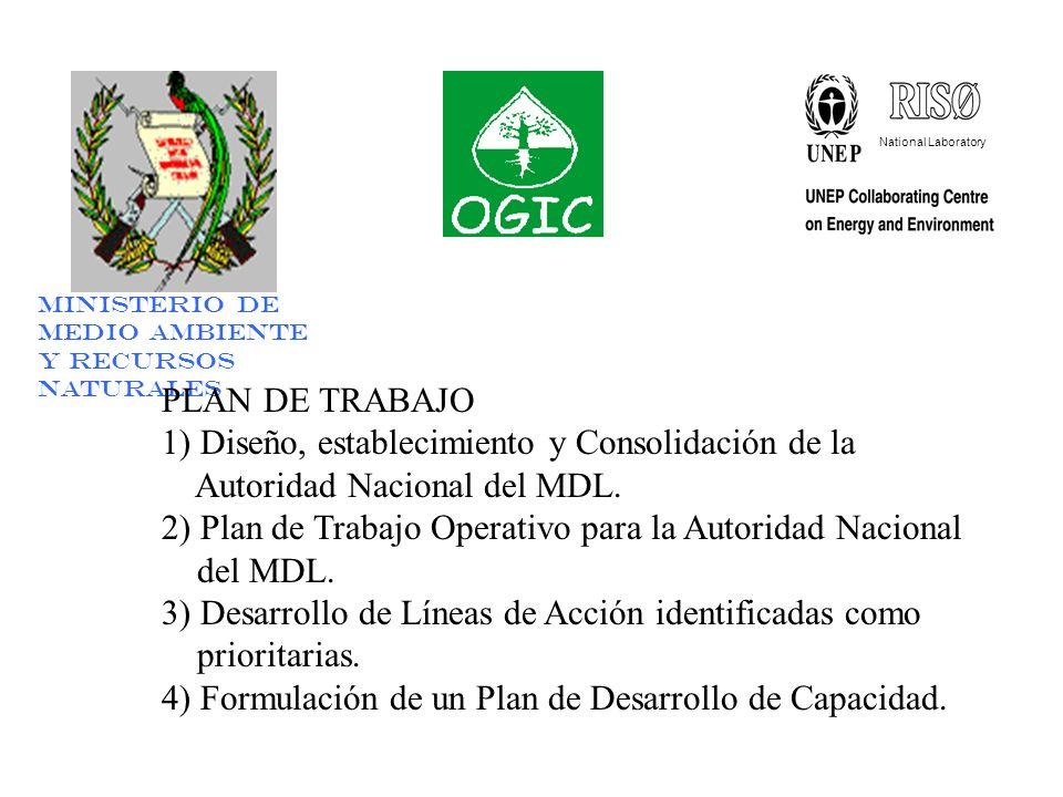 National Laboratory Ministerio de Medio Ambiente y Recursos Naturales PLAN DE TRABAJO 1) Diseño, establecimiento y Consolidación de la Autoridad Nacional del MDL.