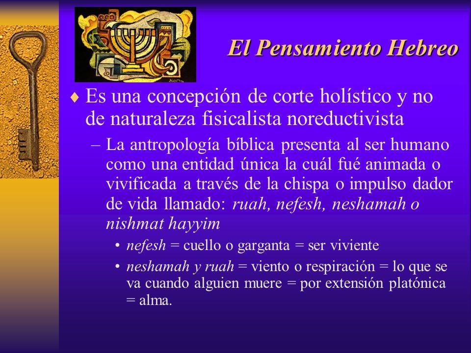 El Pensamiento Hebreo Es una concepción de corte holístico y no de naturaleza fisicalista noreductivista –La antropología bíblica presenta al ser huma