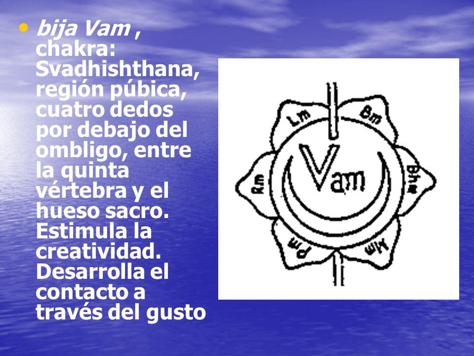 bija Vam, chakra: Svadhishthana, región púbica, cuatro dedos por debajo del ombligo, entre la quinta vértebra y el hueso sacro. Estimula la creativida