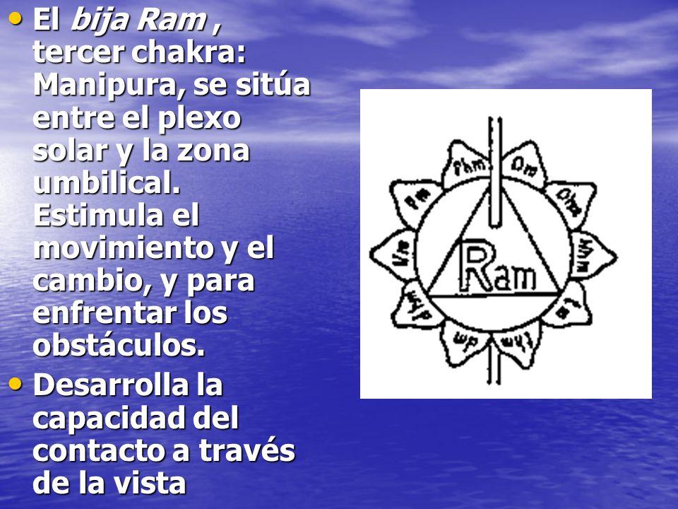 El bija Ram, tercer chakra: Manipura, se sitúa entre el plexo solar y la zona umbilical. Estimula el movimiento y el cambio, y para enfrentar los obst