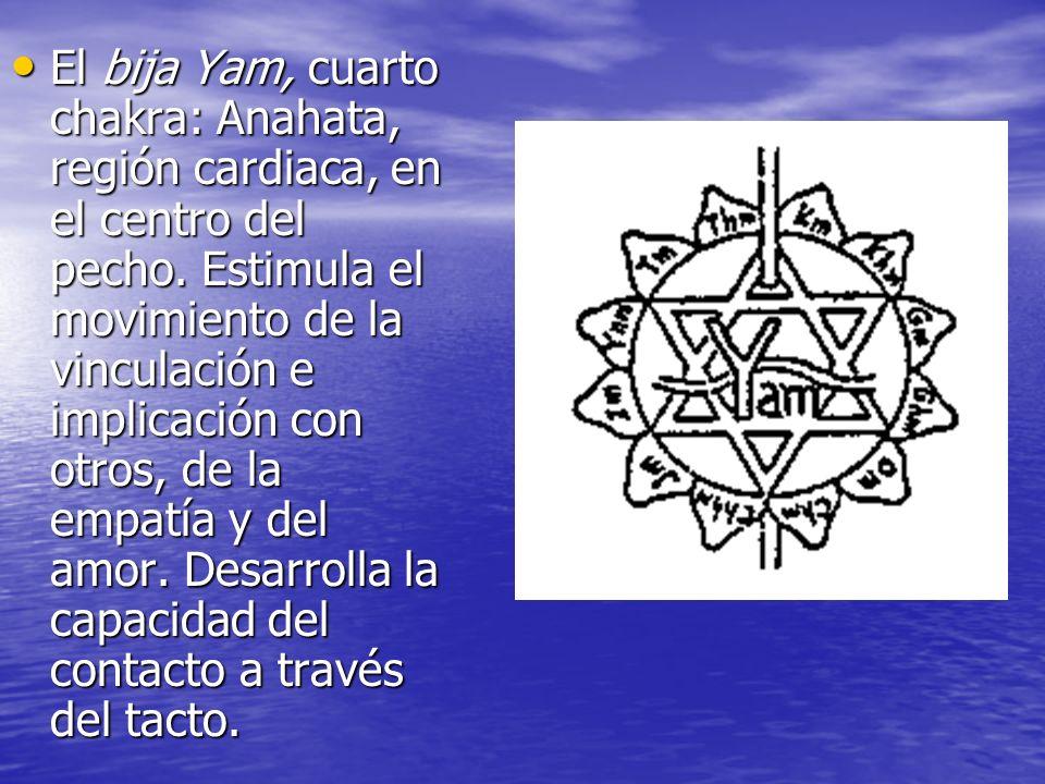 El bija Yam, cuarto chakra: Anahata, región cardiaca, en el centro del pecho. Estimula el movimiento de la vinculación e implicación con otros, de la