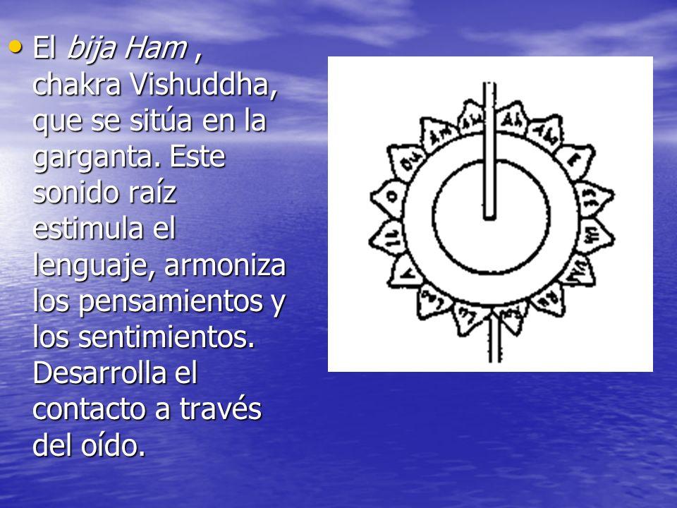 El bija Ham, chakra Vishuddha, que se sitúa en la garganta. Este sonido raíz estimula el lenguaje, armoniza los pensamientos y los sentimientos. Desar