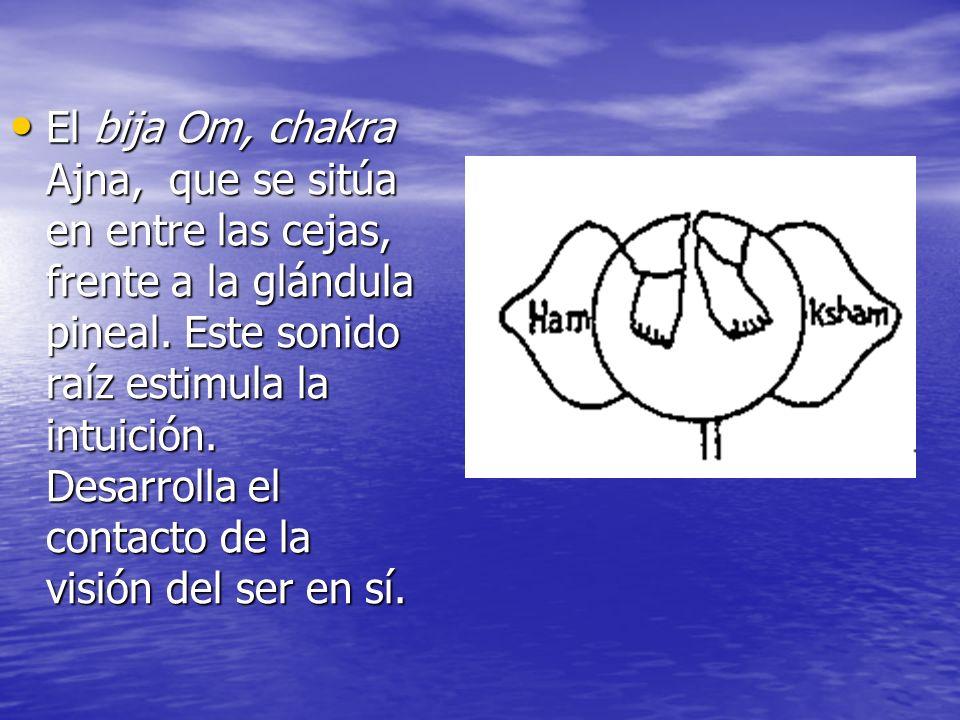 El bija Om, chakra Ajna, que se sitúa en entre las cejas, frente a la glándula pineal. Este sonido raíz estimula la intuición. Desarrolla el contacto