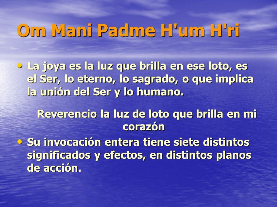 Om Mani Padme H'um H'ri La joya es la luz que brilla en ese loto, es el Ser, lo eterno, lo sagrado, o que implica la unión del Ser y lo humano. La joy