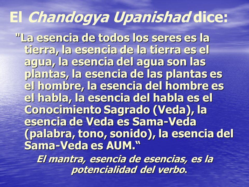 Correspondencia con los chakras Los bijas correspondientes a cada uno de los seis primeros chakras (Lam, Vam, Ram, Yam, Ham, Om), lo mismo que cada una de las letras del alfabeto, dispuestas simbólicamente sobre los pétalos de cada chakra, deben ser pronunciados a fin de obtener la indispensable función vibratoria Los bijas correspondientes a cada uno de los seis primeros chakras (Lam, Vam, Ram, Yam, Ham, Om), lo mismo que cada una de las letras del alfabeto, dispuestas simbólicamente sobre los pétalos de cada chakra, deben ser pronunciados a fin de obtener la indispensable función vibratoria Estas letras se utilizan en la práctica del Hatha Yoga, para la Iluminación de las chakras, representan sonidos raíz de cada uno de ellos que contiene su esencia y sus secretos.