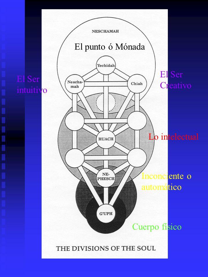 Cuerpo físico Inconciente o automático Lo intelectual El Ser intuitivo El Ser Creativo El punto ó Mónada