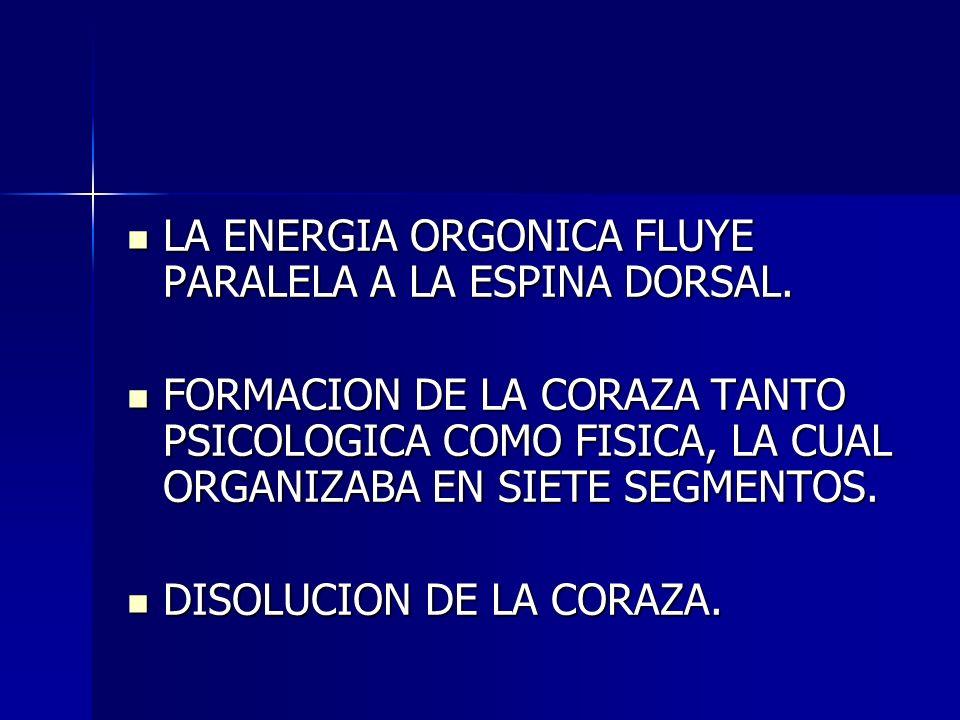 LA ENERGIA ORGONICA FLUYE PARALELA A LA ESPINA DORSAL. LA ENERGIA ORGONICA FLUYE PARALELA A LA ESPINA DORSAL. FORMACION DE LA CORAZA TANTO PSICOLOGICA