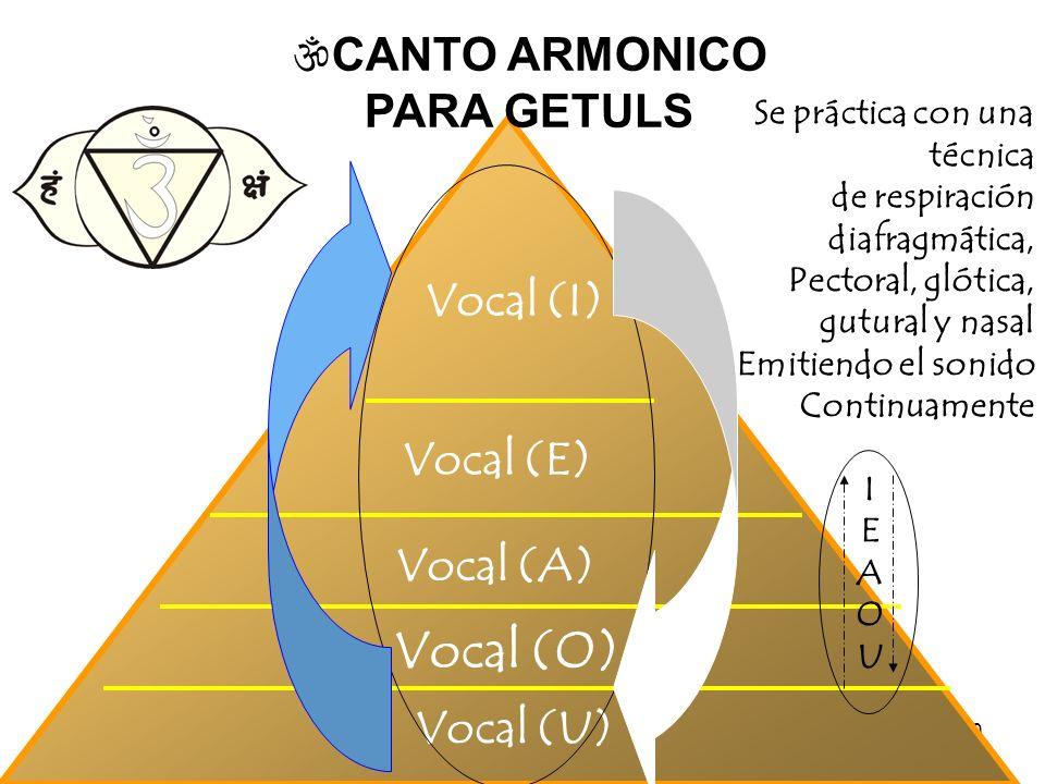 20 Vocal (U) Vocal (O) Vocal (E) Vocal (I) CANTO ARMONICO PARA GETULS Vocal (A) Se práctica con una técnica de respiración diafragmática, Pectoral, gl