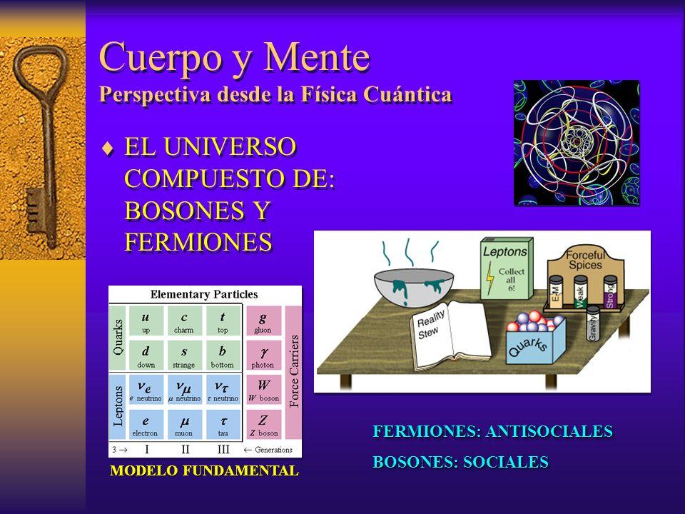Cuerpo y Mente Perspectiva desde la Física Cuántica EL UNIVERSO COMPUESTO DE: BOSONES Y FERMIONES FERMIONES: ANTISOCIALES BOSONES: SOCIALES FERMIONES:
