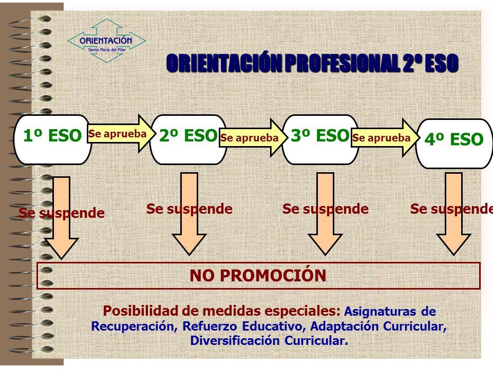 ORIENTACIÓN PROFESIONAL 2º ESO 2º ESO Posibilidad de medidas especiales: Asignaturas de Recuperación, Refuerzo Educativo, Adaptación Curricular, Diversificación Curricular.