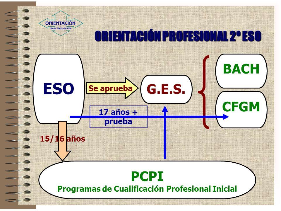 ORIENTACIÓN PROFESIONAL 2º ESO ESO G.E.S.
