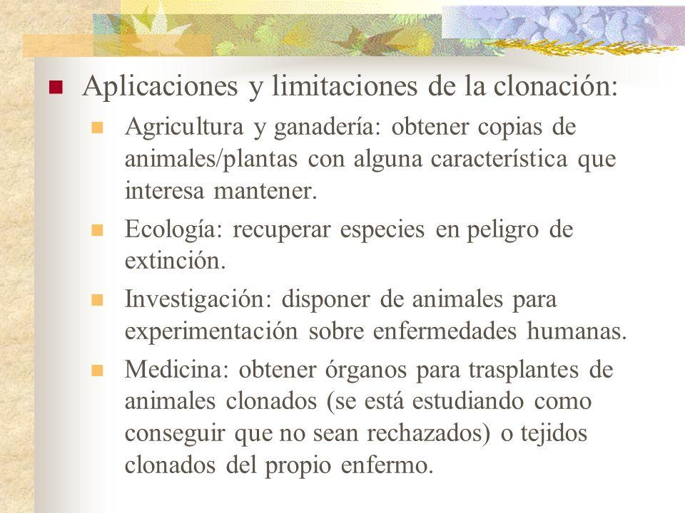 Aplicaciones y limitaciones de la clonación: Agricultura y ganadería: obtener copias de animales/plantas con alguna característica que interesa manten