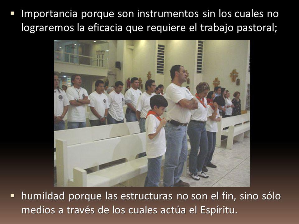 Importancia porque son instrumentos sin los cuales no lograremos la eficacia que requiere el trabajo pastoral; Importancia porque son instrumentos sin