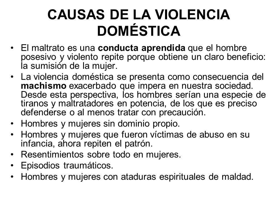 CAUSAS DE LA VIOLENCIA DOMÉSTICA El maltrato es una conducta aprendida que el hombre posesivo y violento repite porque obtiene un claro beneficio: la