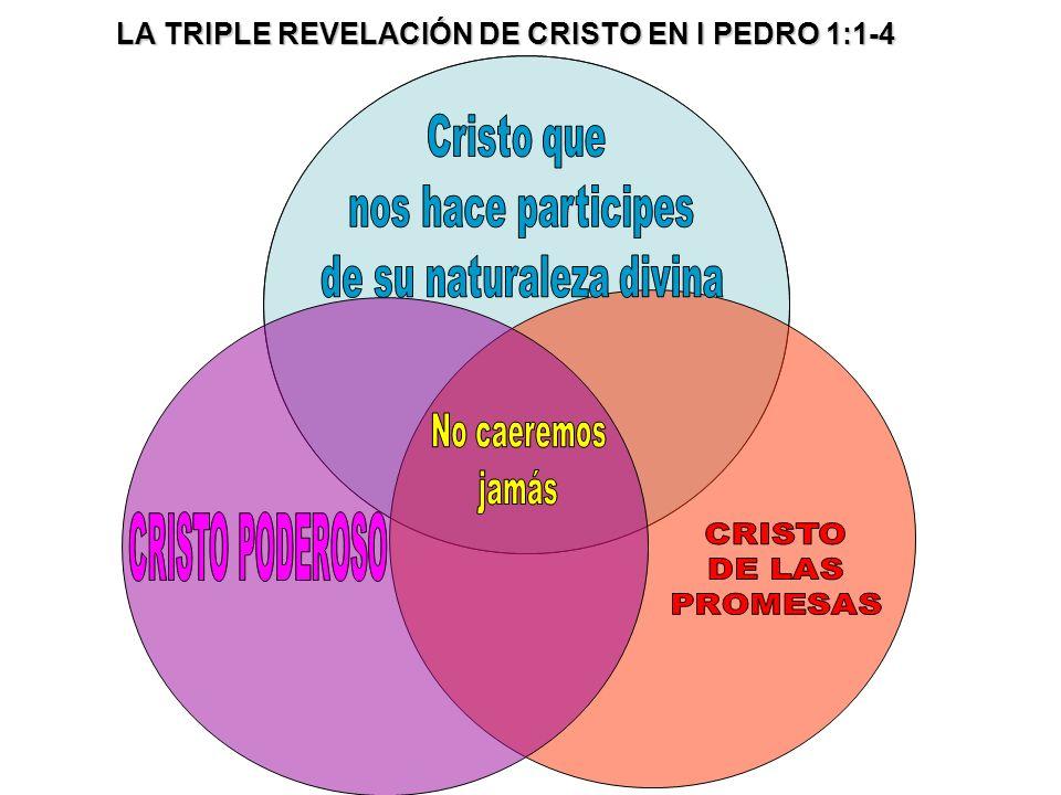 CRISTO DE PODER 1:3ª,b Por el divino poder de Cristo hemos recibido todas las cosas que pertenecen a la vida y a la piedad.