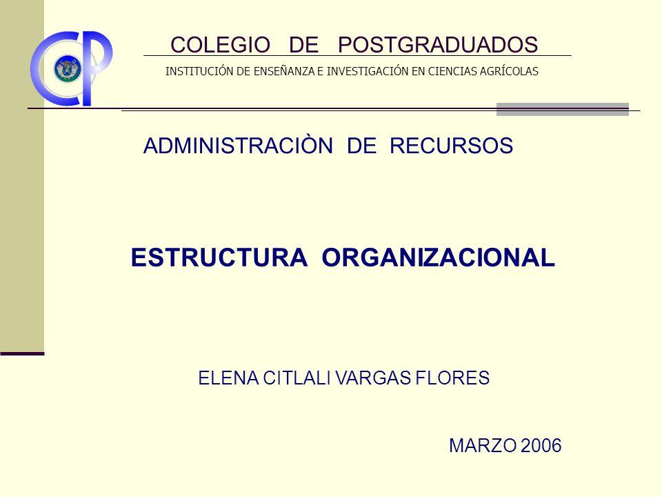 ORGANIGRAMA STAFF GERENTE GENERAL MERCADOTECNIA FINANZAS ABASTECIMIENTOS PERSONAL STAFF