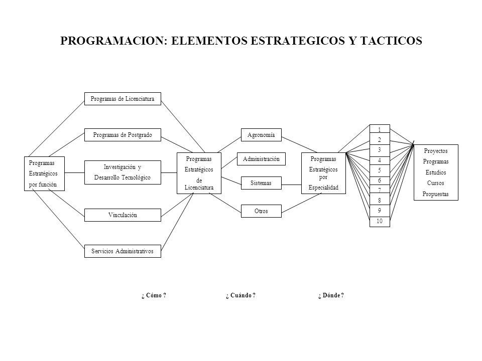 PROGRAMACION: ELEMENTOS ESTRATEGICOS Y TACTICOS Programas de Licenciatura Programas de Postgrado Programas Estratégicos por función Investigación y De