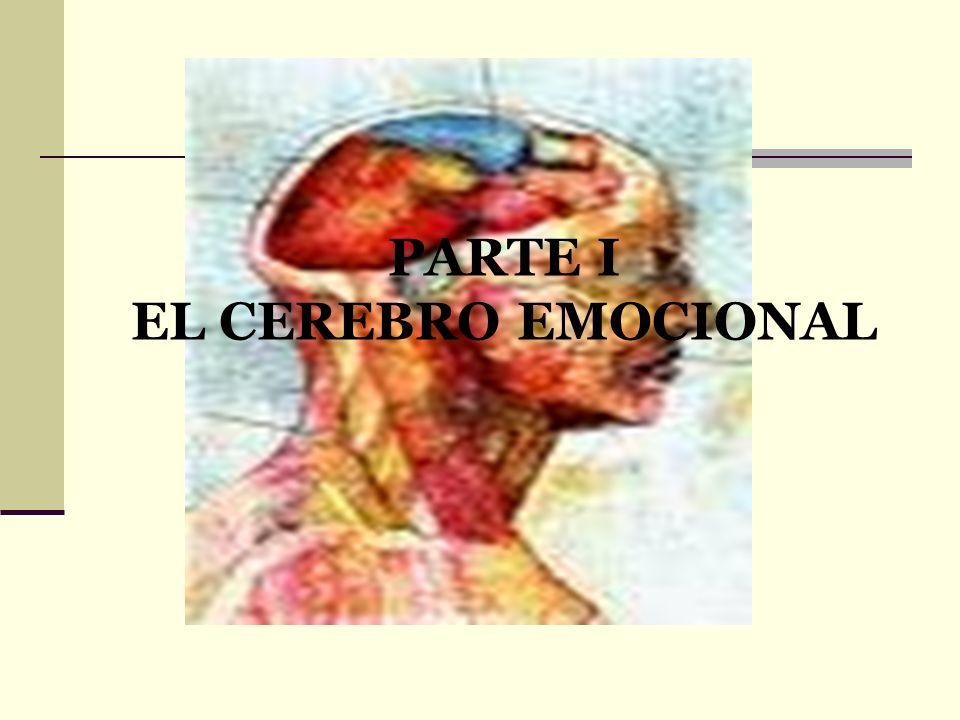 PARTE V LA ALFABETIZACIÓN EMOCIONAL