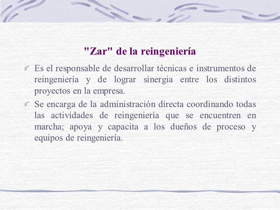 Zar de la reingeniería Es el responsable de desarrollar técnicas e instrumentos de reingeniería y de lograr sinergia entre los distintos proyectos en la empresa.