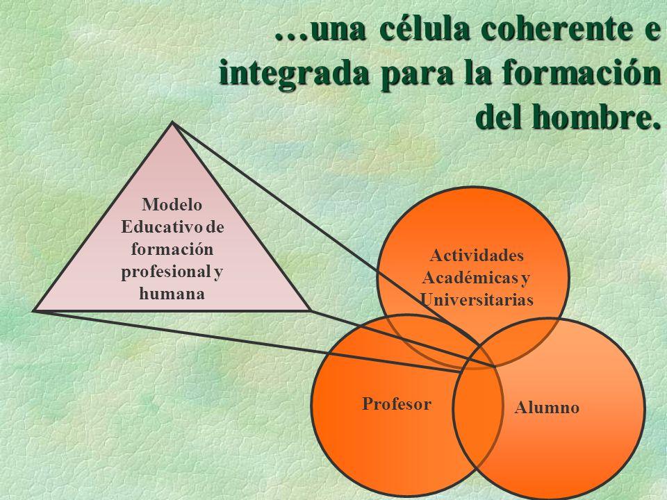 …una célula coherente e integrada para la formación del hombre. Actividades Académicas y Universitarias Profesor Alumno Modelo Educativo de formación