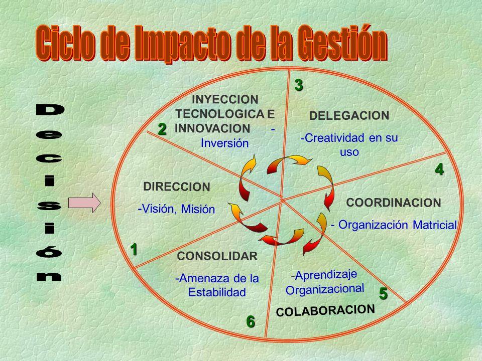 -Aprendizaje Organizacional COLABORACION DIRECCION -Visión, Misión 1 2 3 4 5 6 DELEGACION -Creatividad en su uso COORDINACION - Organización Matricial INYECCION TECNOLOGICA E INNOVACION - Inversión CONSOLIDAR -Amenaza de la Estabilidad