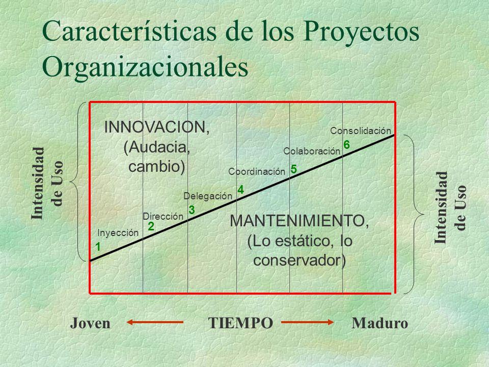 Características de los Proyectos Organizacionales INNOVACION, (Audacia, cambio) MANTENIMIENTO, (Lo estático, lo conservador) JovenMaduroTIEMPO Inyección Dirección Delegación Coordinación Colaboración Consolidación Intensidad de Uso 1 2 3 4 5 6