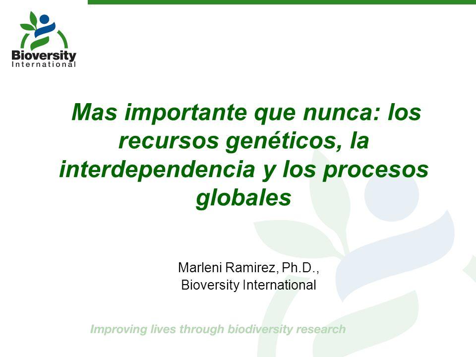 Mas importante que nunca: los recursos genéticos, la interdependencia y los procesos globales Marleni Ramirez, Ph.D., Bioversity International
