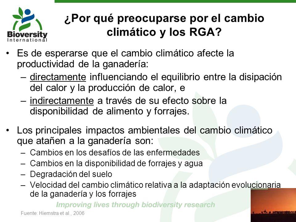 ¿Por qué preocuparse por el cambio climático y los RGA? Es de esperarse que el cambio climático afecte la productividad de la ganadería: –directamente