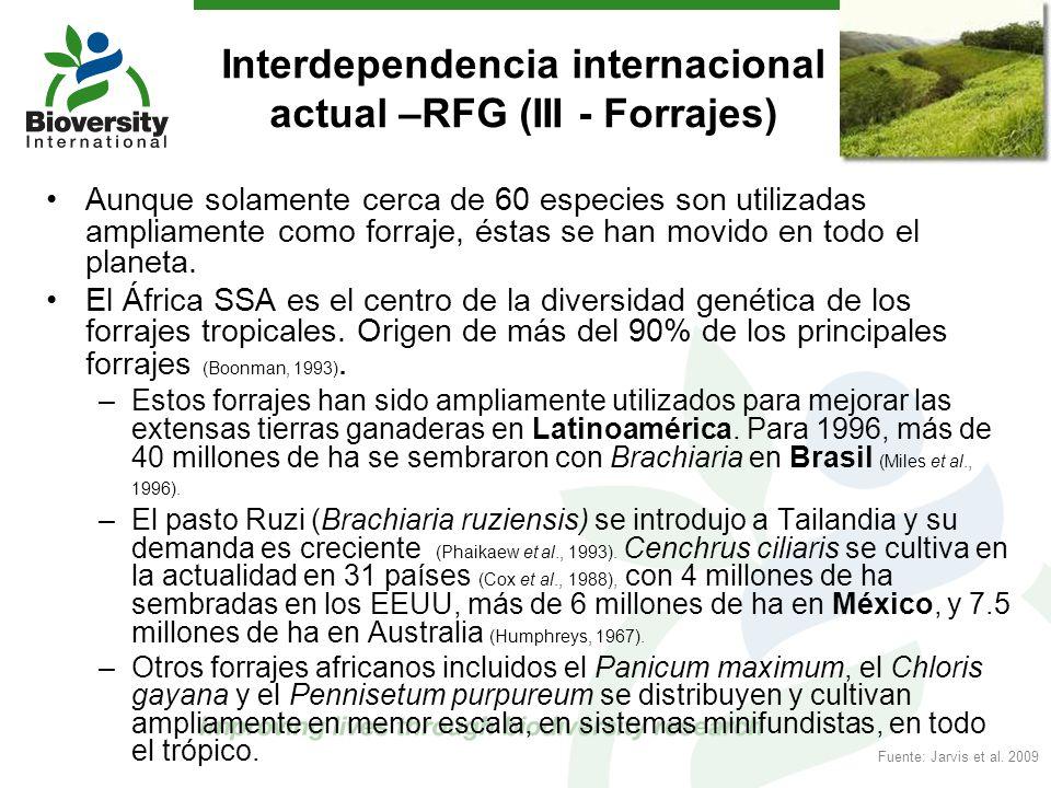 Interdependencia internacional actual –RFG (III - Forrajes) Aunque solamente cerca de 60 especies son utilizadas ampliamente como forraje, éstas se ha