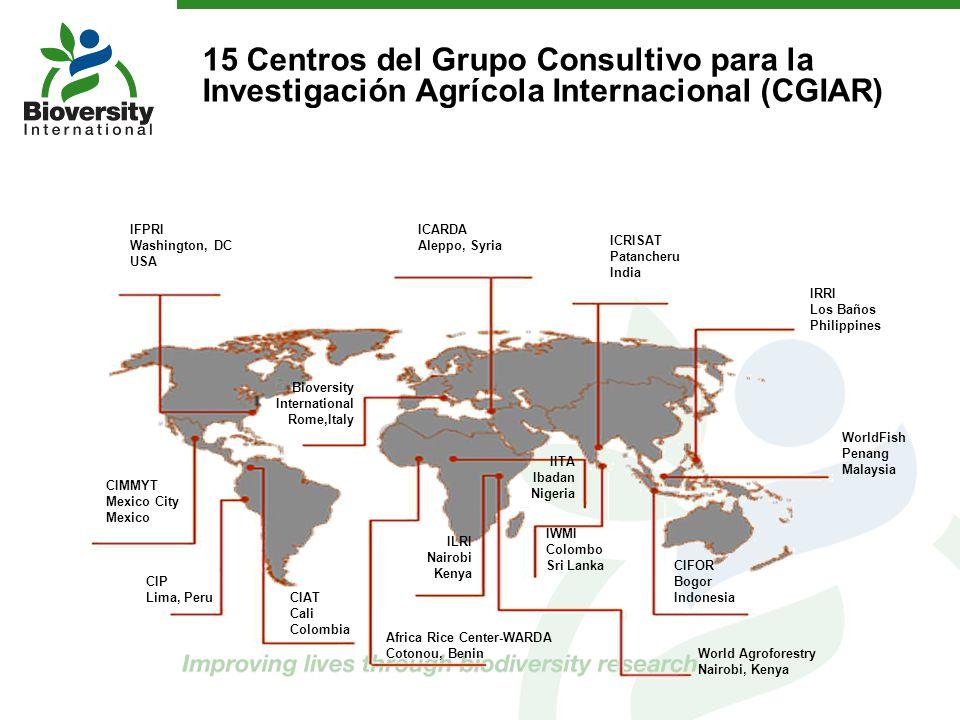 2 15 Centros del Grupo Consultivo para la Investigación Agrícola Internacional (CGIAR) IFPRI Washington, DC USA CIMMYT Mexico City Mexico CIP Lima, Pe