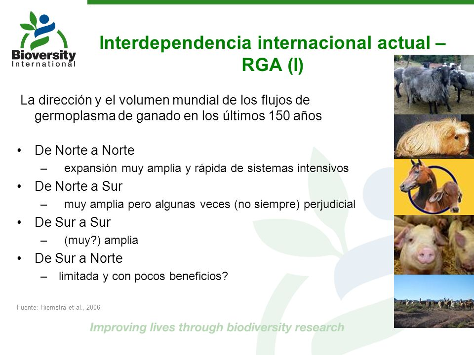 Interdependencia internacional actual – RGA (I) La dirección y el volumen mundial de los flujos de germoplasma de ganado en los últimos 150 años De No