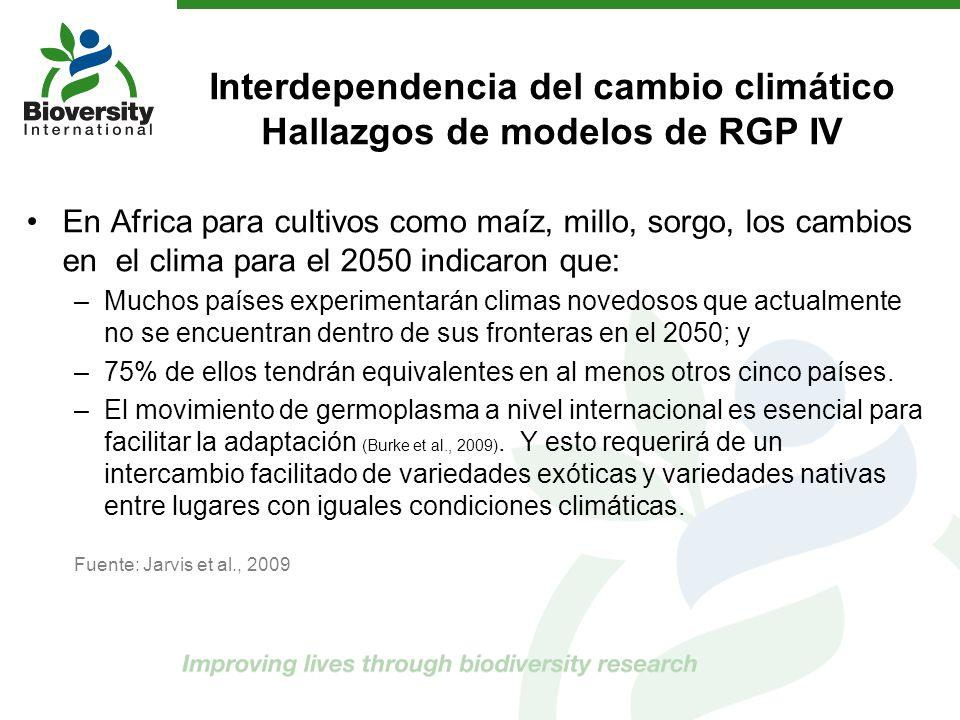 Interdependencia del cambio climático Hallazgos de modelos de RGP IV En Africa para cultivos como maíz, millo, sorgo, los cambios en el clima para el