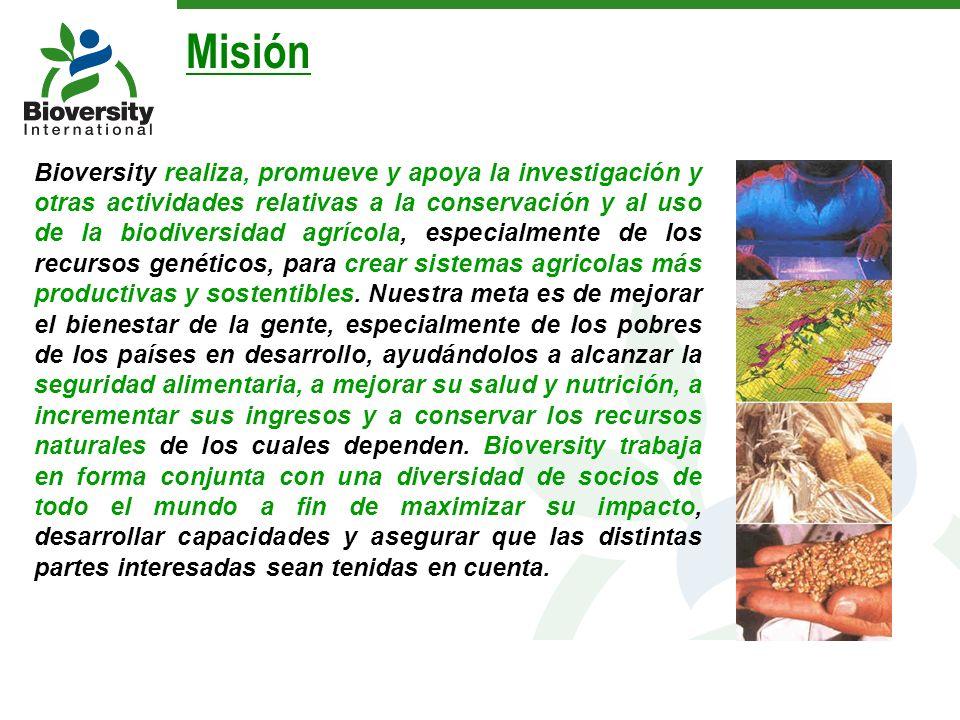 Bioversity realiza, promueve y apoya la investigación y otras actividades relativas a la conservación y al uso de la biodiversidad agrícola, especialm