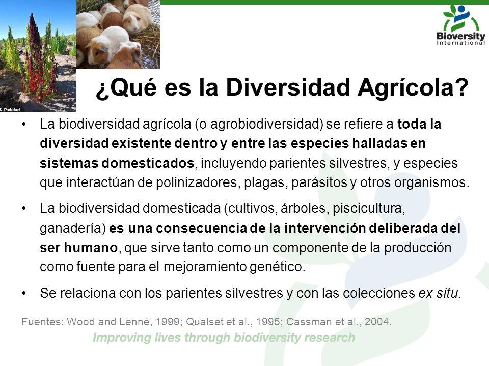 ¿Qué es la Diversidad Agrícola? La biodiversidad agrícola (o agrobiodiversidad) se refiere a toda la diversidad existente dentro y entre las especies