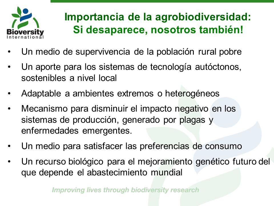 Importancia de la agrobiodiversidad: Si desaparece, nosotros también! Un medio de supervivencia de la población rural pobre Un aporte para los sistema