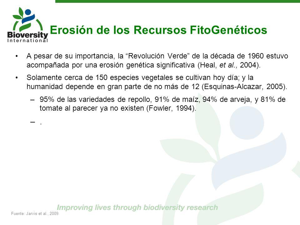 Erosión de los Recursos FitoGenéticos A pesar de su importancia, la Revolución Verde de la década de 1960 estuvo acompañada por una erosión genética s