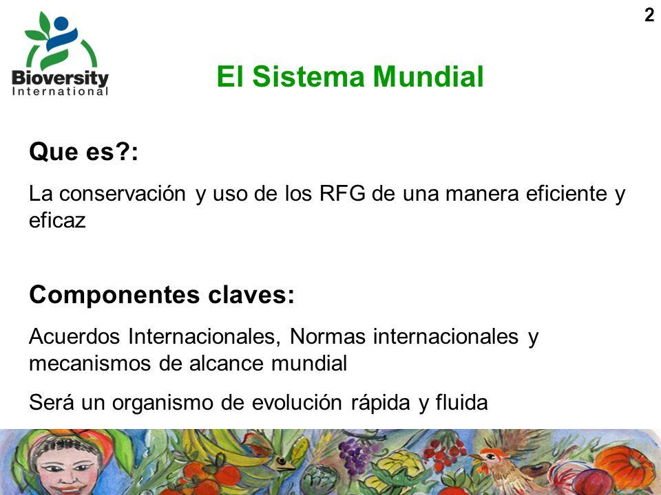 2 El Sistema Mundial Que es?: La conservación y uso de los RFG de una manera eficiente y eficaz Componentes claves: Acuerdos Internacionales, Normas i