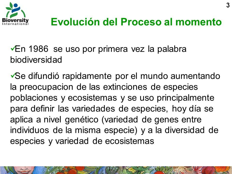 3 Evolución del Proceso al momento En 1986 se uso por primera vez la palabra biodiversidad Se difundió rapidamente por el mundo aumentando la preocupa