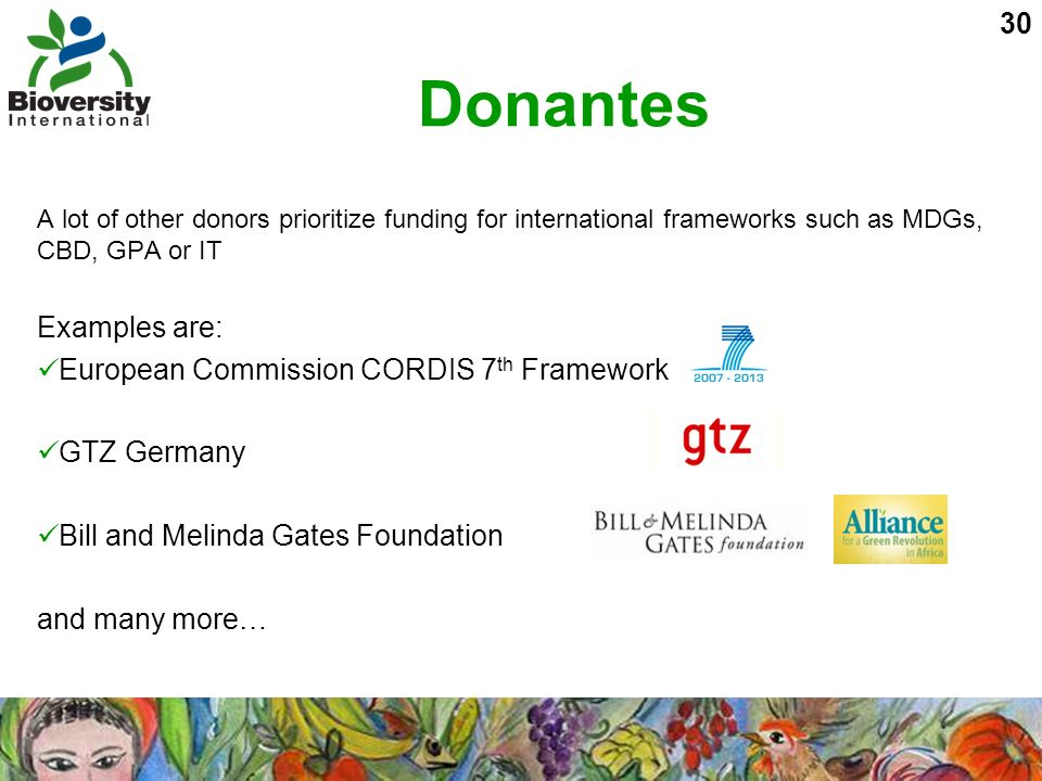 30 Donantes A lot of other donors prioritize funding for international frameworks such as MDGs, CBD, GPA or IT Examples are: European Commission CORDI