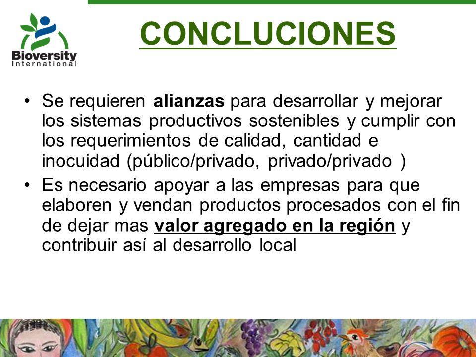 CONCLUCIONES Se requieren alianzas para desarrollar y mejorar los sistemas productivos sostenibles y cumplir con los requerimientos de calidad, cantid