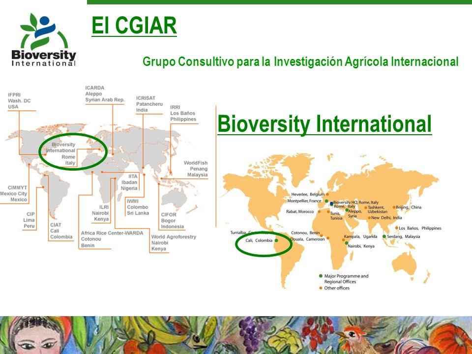 Bioversity International El CGIAR Grupo Consultivo para la Investigación Agrícola Internacional