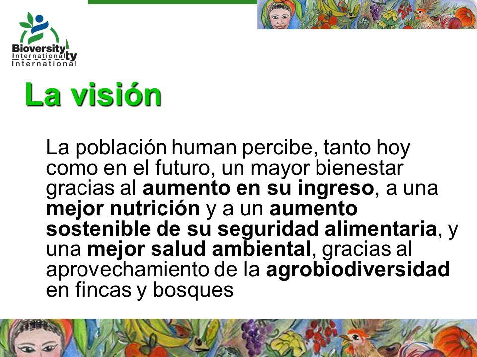 La visión La población human percibe, tanto hoy como en el futuro, un mayor bienestar gracias al aumento en su ingreso, a una mejor nutrición y a un a