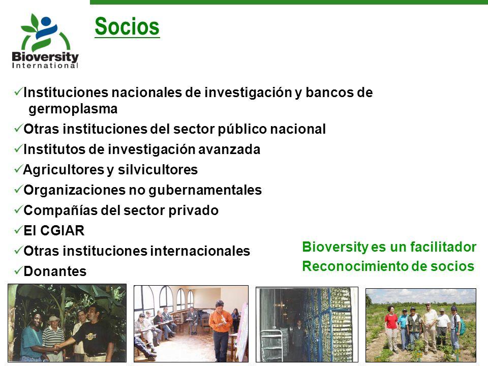 Instituciones nacionales de investigación y bancos de germoplasma Otras instituciones del sector público nacional Institutos de investigación avanzada