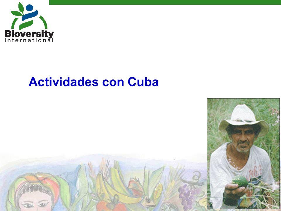 Actividades con Cuba