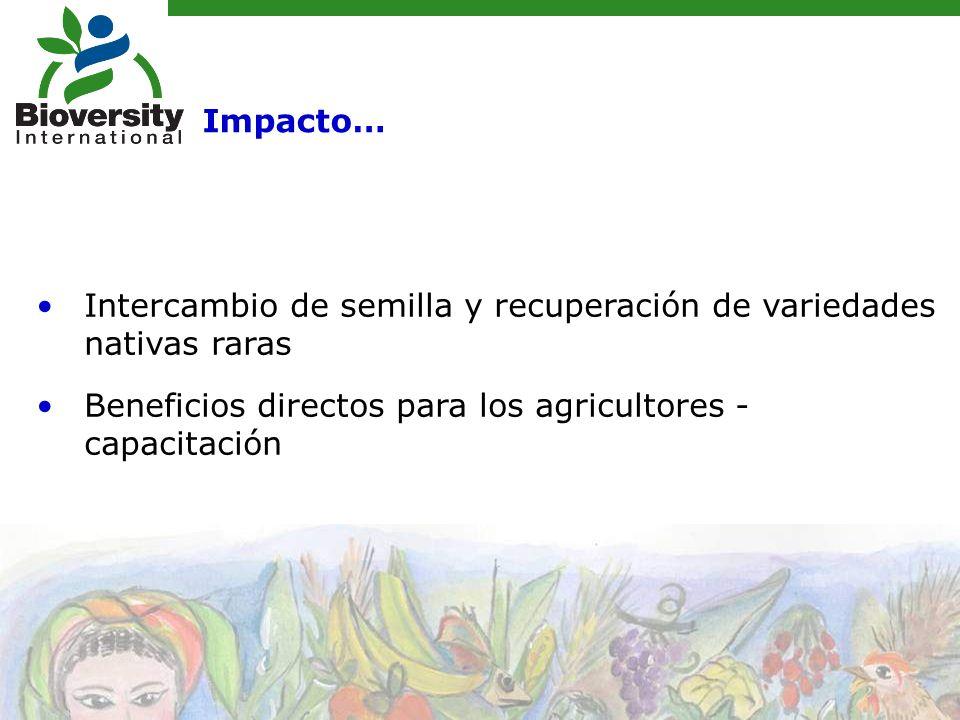 Intercambio de semilla y recuperación de variedades nativas raras Beneficios directos para los agricultores - capacitación Impacto…