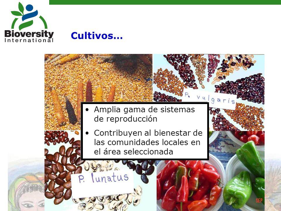 Cultivos… Amplia gama de sistemas de reproducción Contribuyen al bienestar de las comunidades locales en el área seleccionada