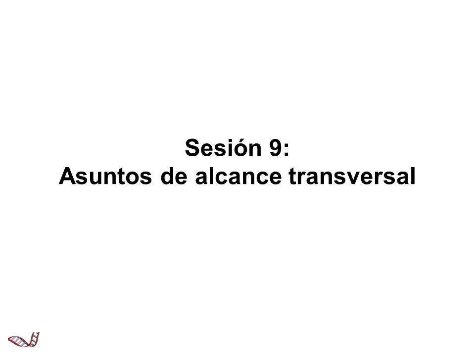 Sesión 9: Asuntos de alcance transversal